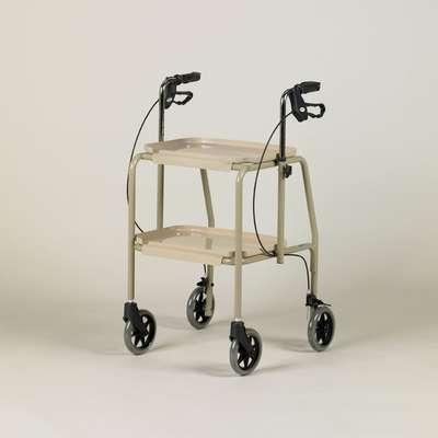 Trolley Walker